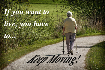 To stay healthy you need to keep moving. There are many benefits to standing and walking.