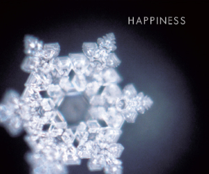 Masaru Emoto Water Crystal imprinted with Happiness