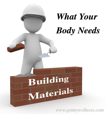 What your body needs everyday to stay healthy and strong is building materials.