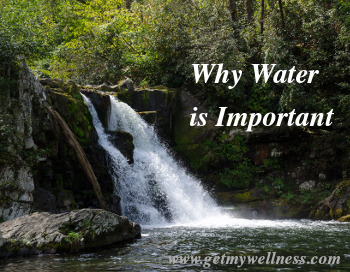 Why Water is Important. We use it for fun, transportation and cooking. Most importantly, we need it for our bodies.