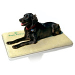 The Nikken Magnetic Pet Pad is also perfect for a crib.